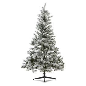 George Home 6ft Eliza Pre Lit Snowy Pine Christmas Tree Asda Groceries