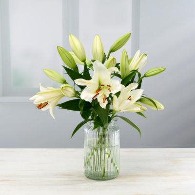 ASDA Oriental Lilies