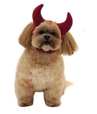 George Home Halloween Devil Pet Headband